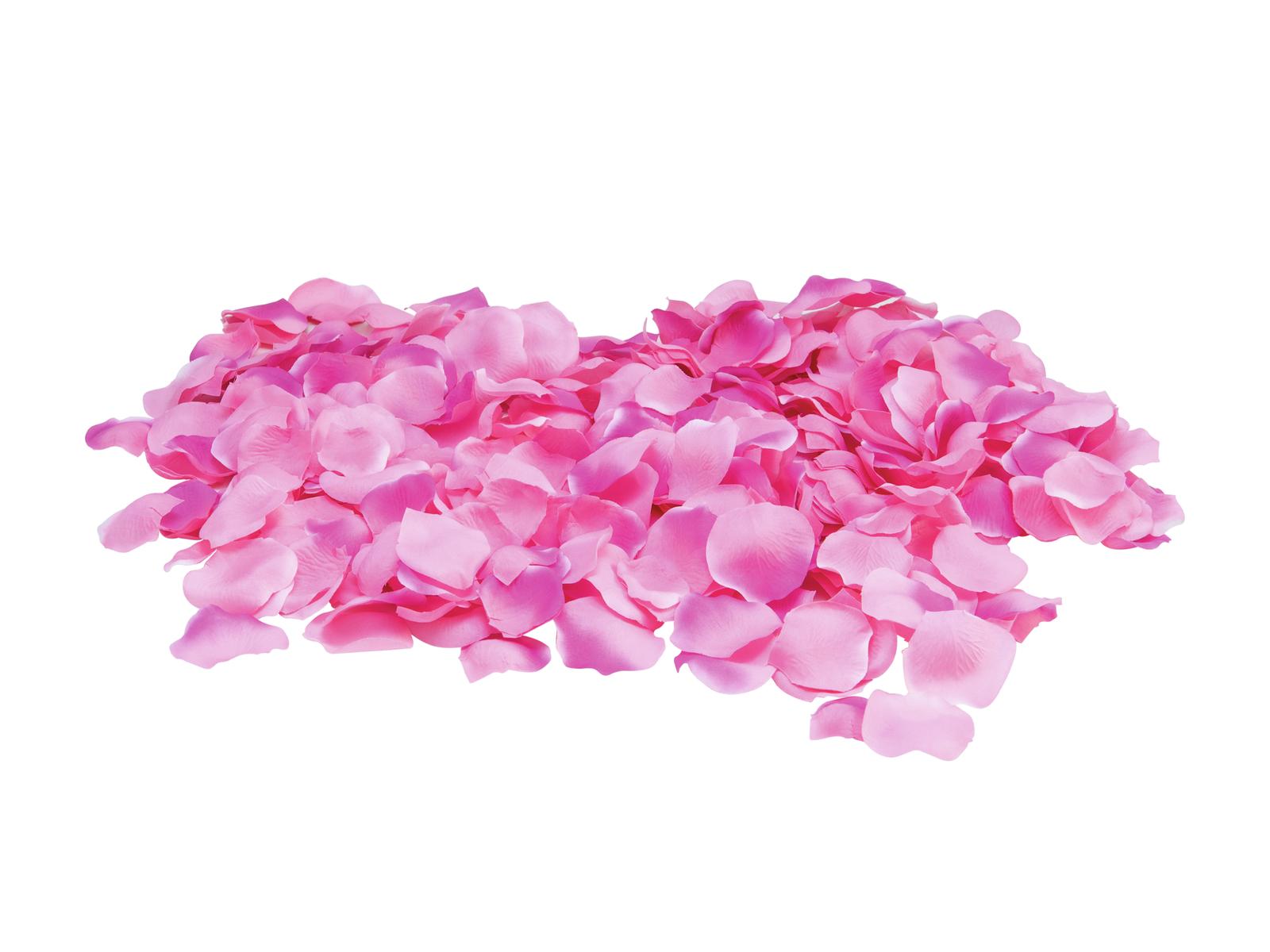 EUROPALMS Petali di Rosa, rosa, 500x