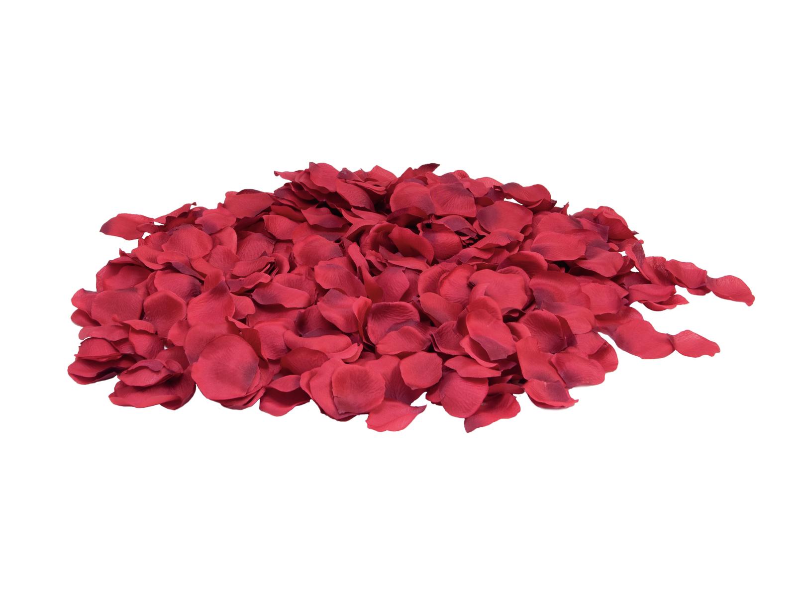 EUROPALMS Petali di Rosa, rosso, 500x