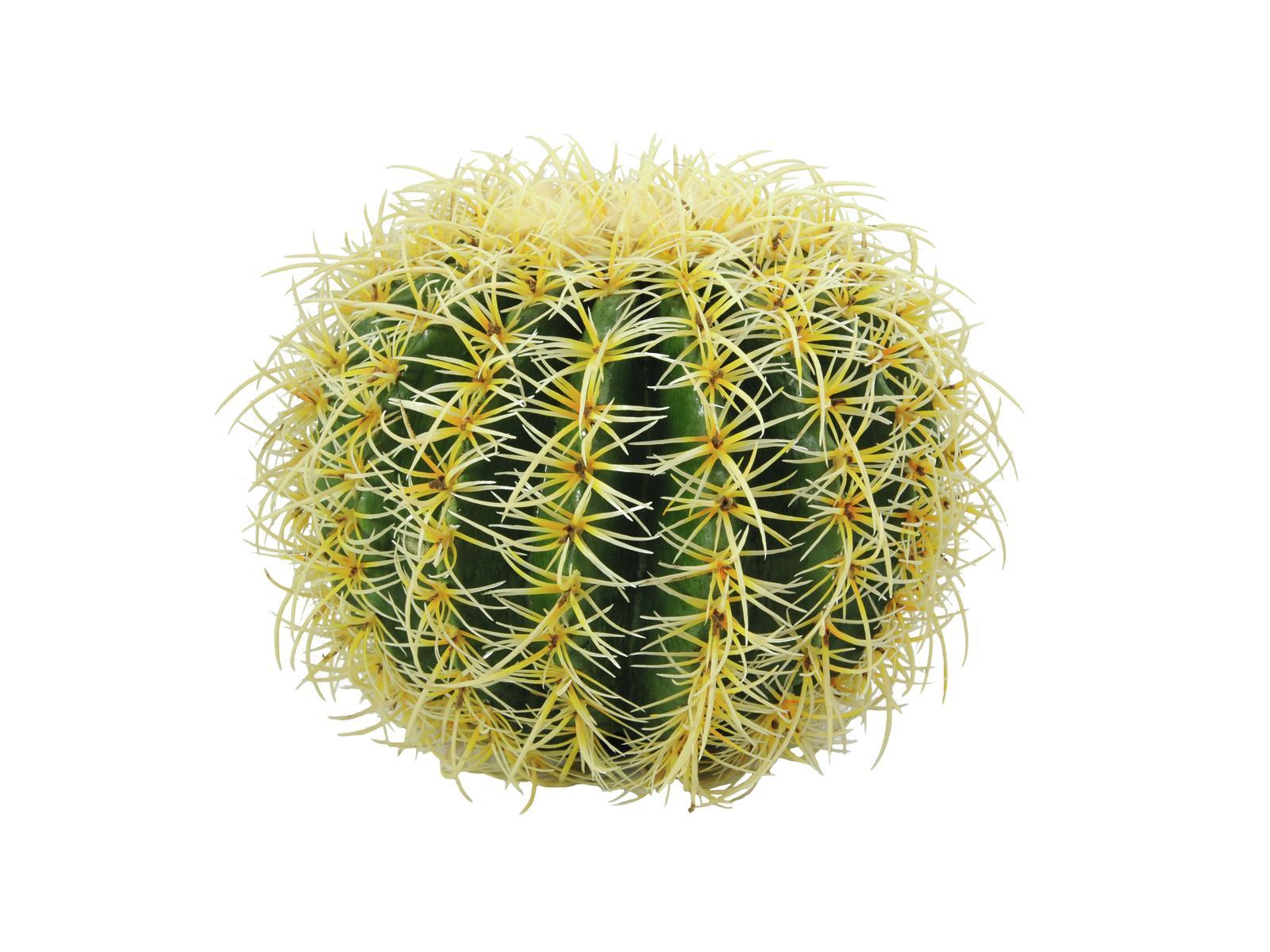 EUROPALMS Cactus artificiale rotondo colore verde giallo 27cm