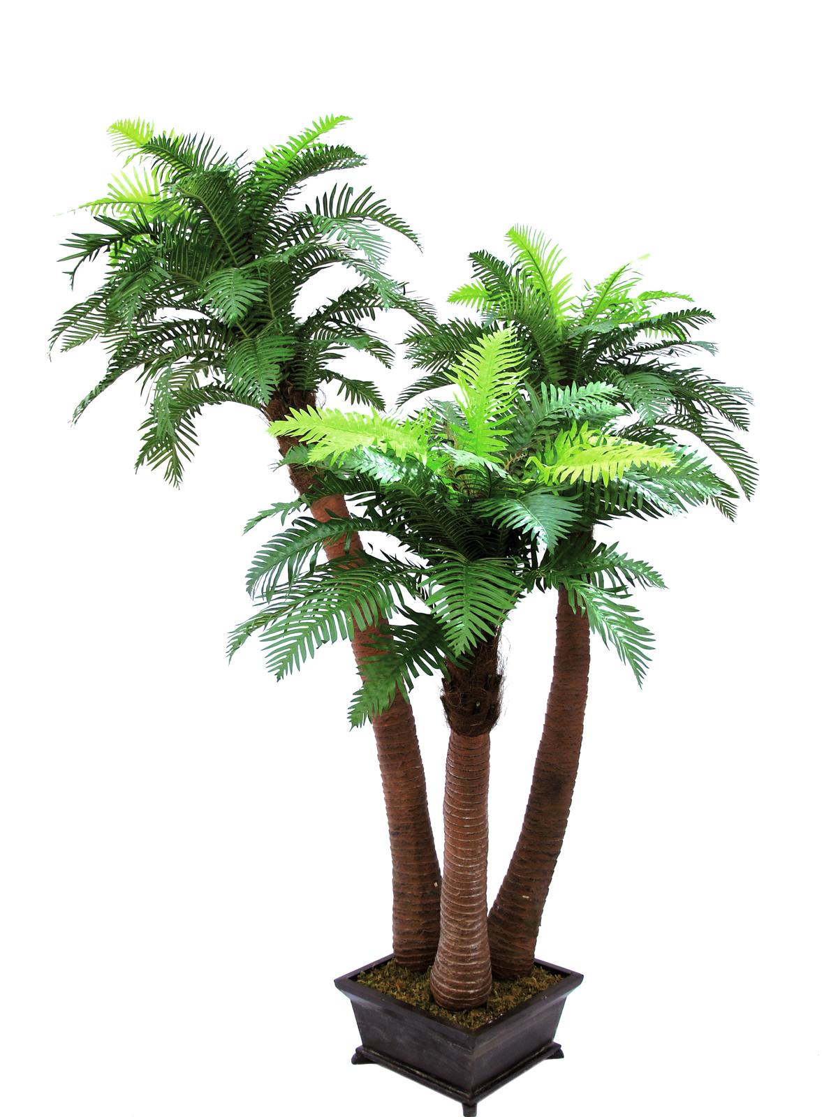 EUROPALMS pianta artificiale F