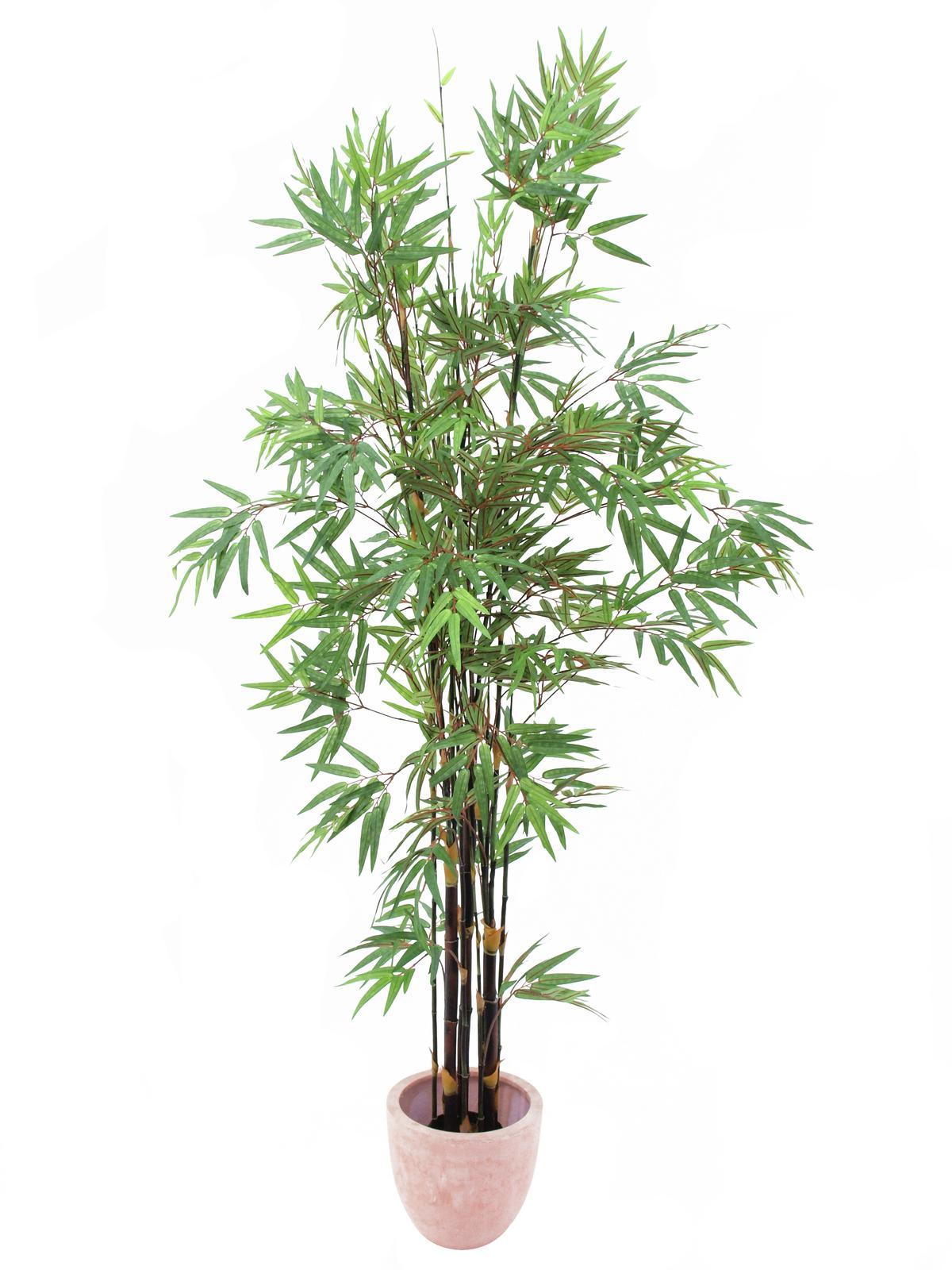 EUROPALMS Bambus Dunkelstamm, Kunstpflanze 210cm