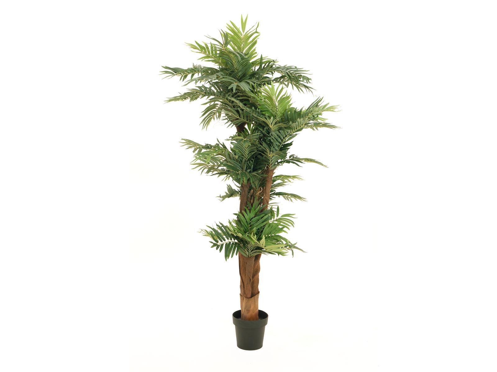 EUROPALMS Areca Palme, Kunstpflanze, 170cm