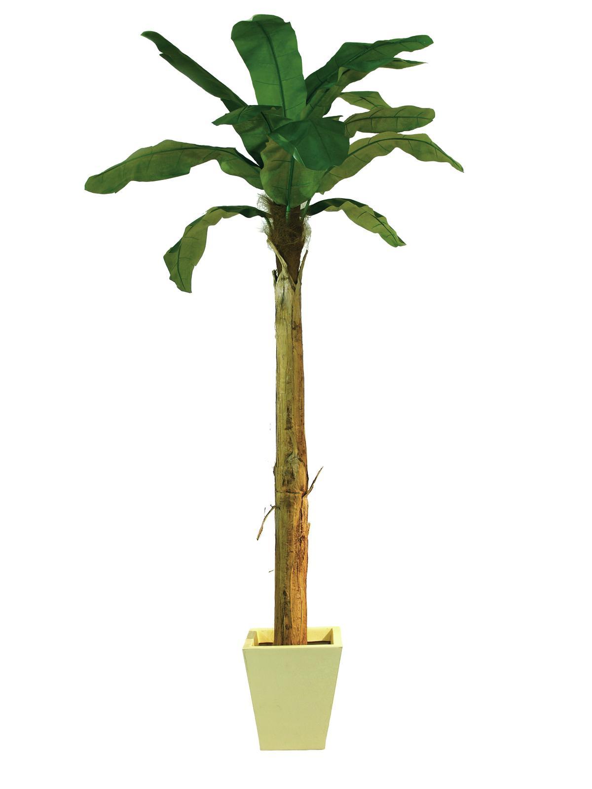 EUROPALMS Bananenbaum, Kunstpflanze, 270cm