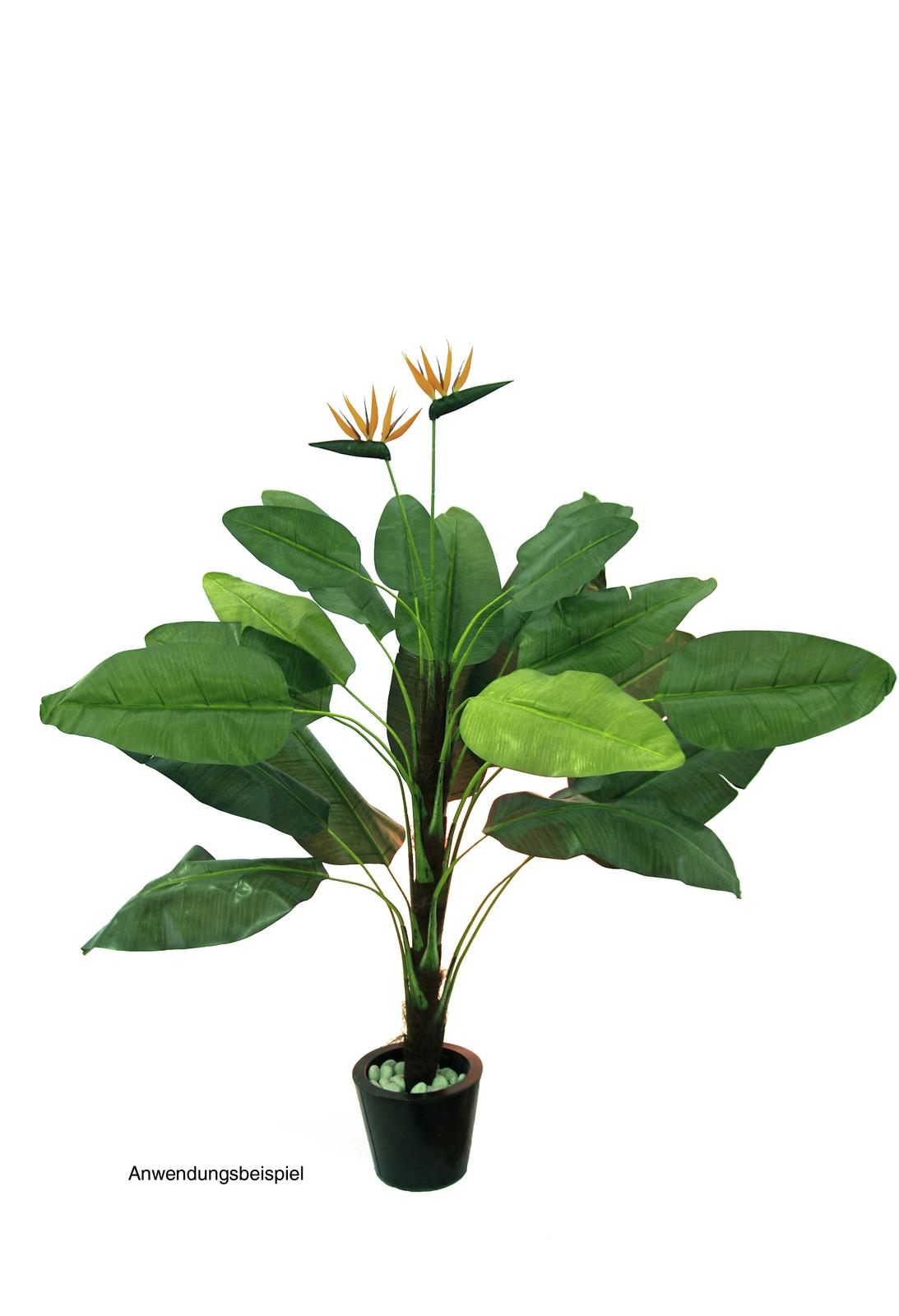 EUROPALMS pianta artificiale parzialmente naturale Tralizia, 230cm