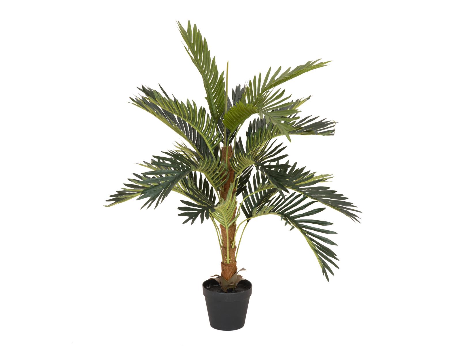 EUROPALMS plant, artificial Coconut palm tree, 90cm