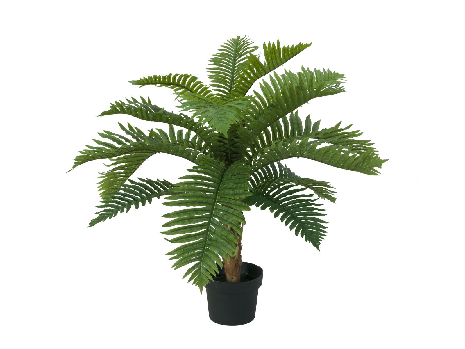 EUROPALMS Cycas albero di palme, piante artificiali, 70cm