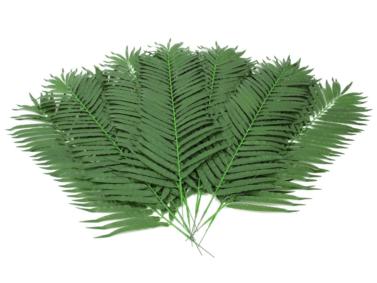 EUROPALMS di Cocco ramo di palma 130cm 12x