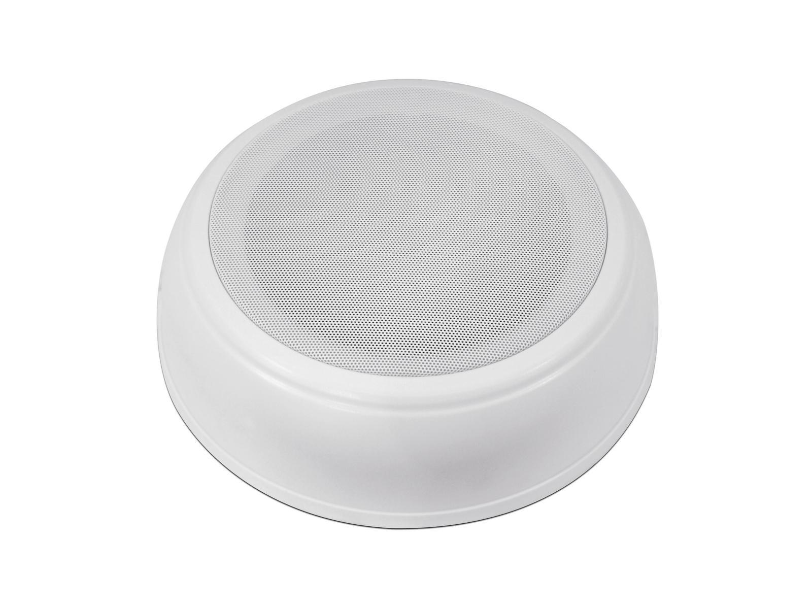 Cassa diffusore da soffitto parete 10 watt OMNITRONIC DAL-2