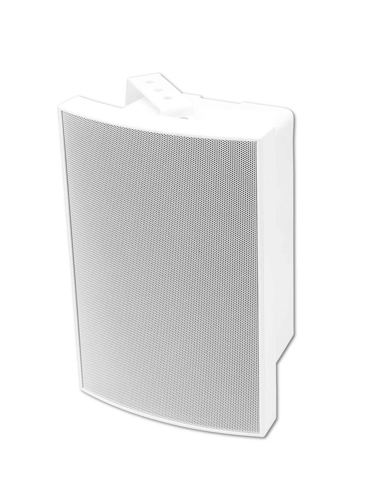 Cassa diffusore da soffitto parete 40 watt OMNITRONIC WMS-5W bianca