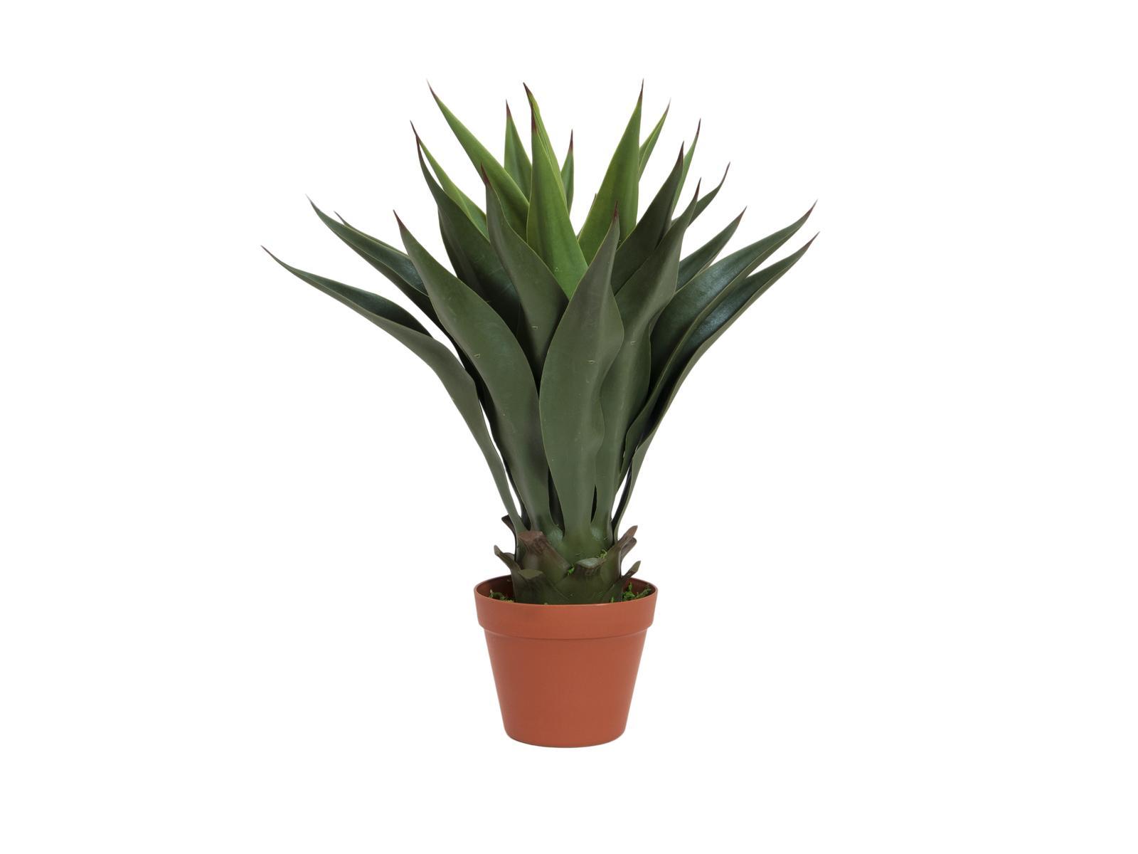 EUROPALMS pianta artificiale YUCCA colore verde scuro, 50cm