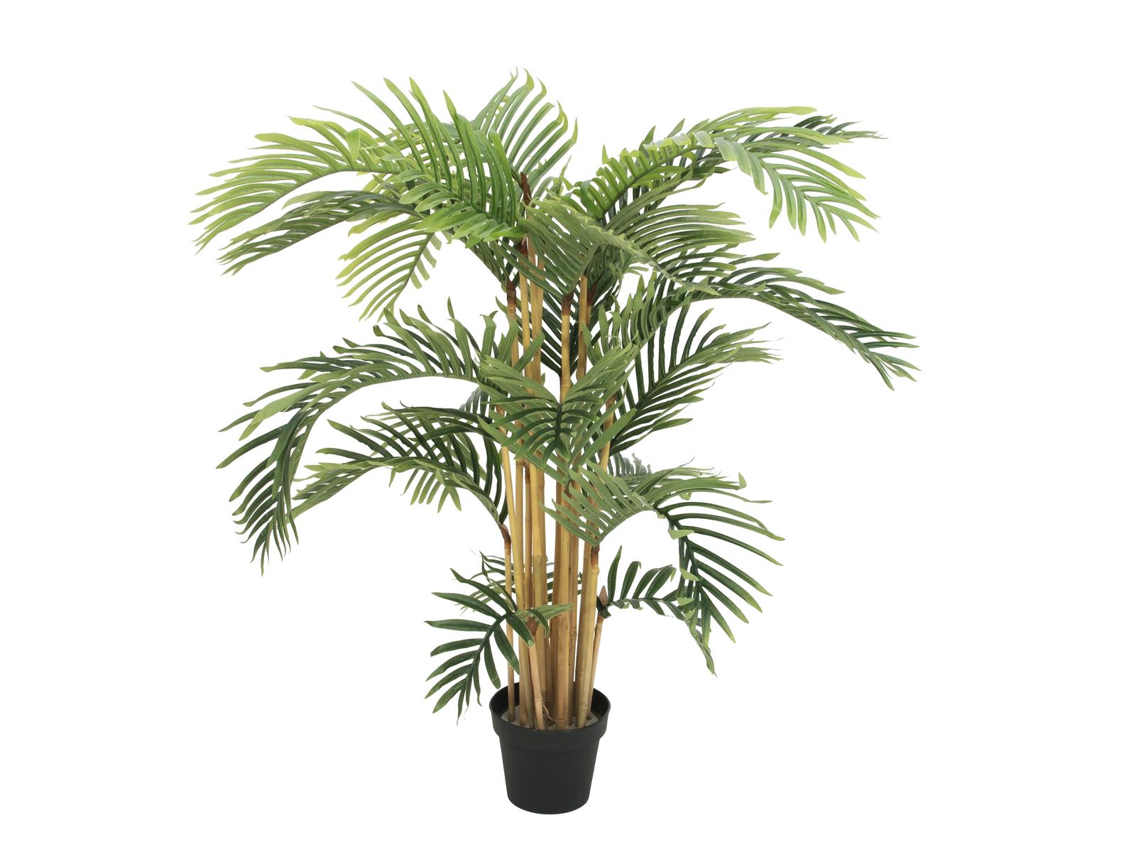 EUROPALMS pianta artificiale  palma di Kentia, 140cm