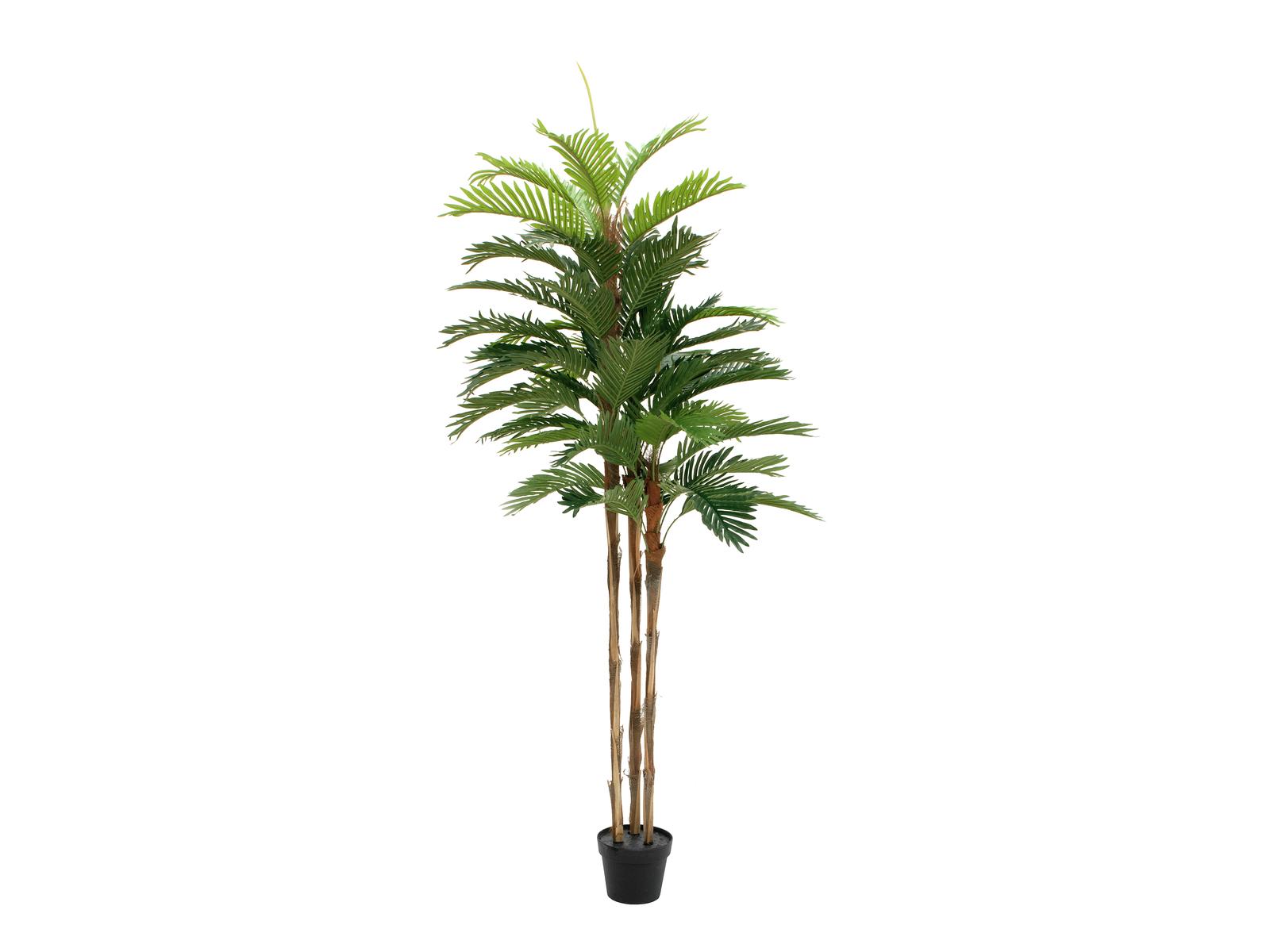 EUROPALMS Kentia Palme, Kunstpflanze, 180cm