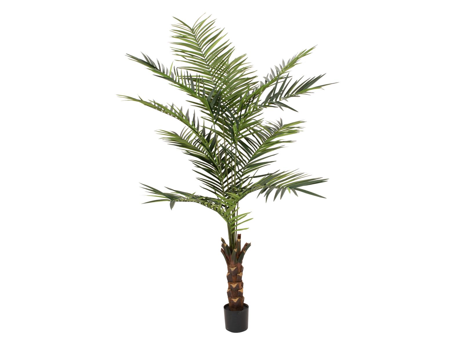 EUROPALMS Kentia Palme, Kunstpflanze, 240cm