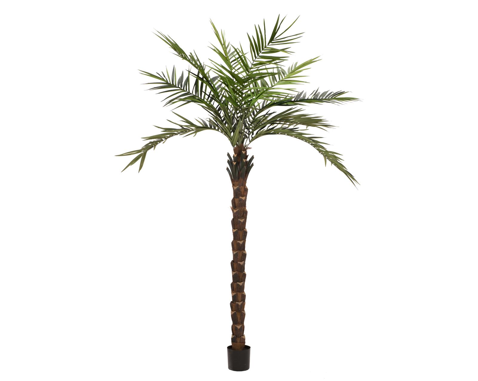 EUROPALMS Kentia Palme deluxe, Kunstpflanze  300cm
