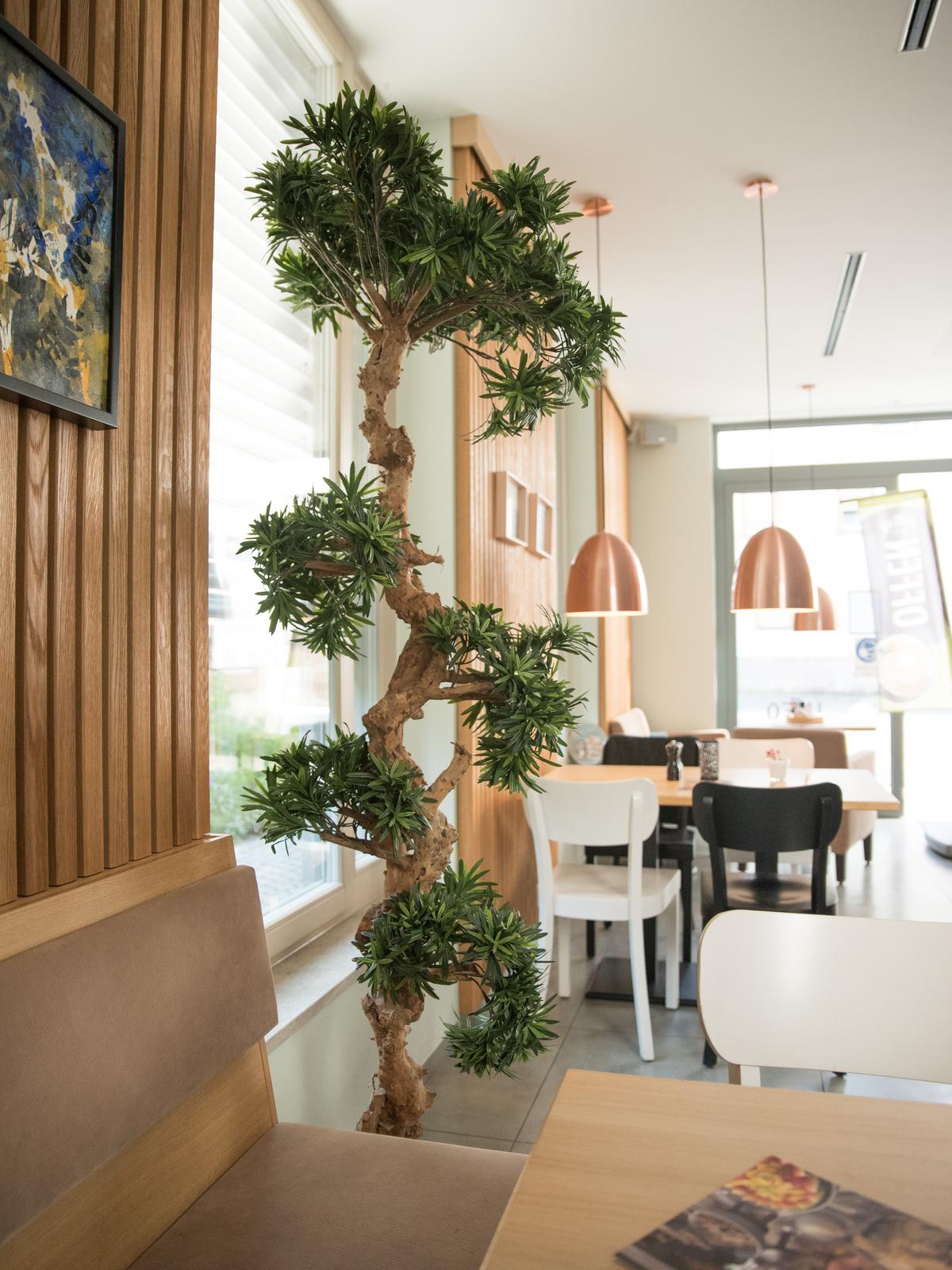 EUROPALMS pianta artificiale albero Bonsai, 180cm