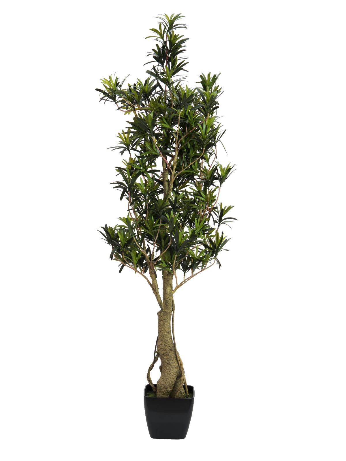 EUROPALMS Steineibe, Kunstpflanze, 115cm