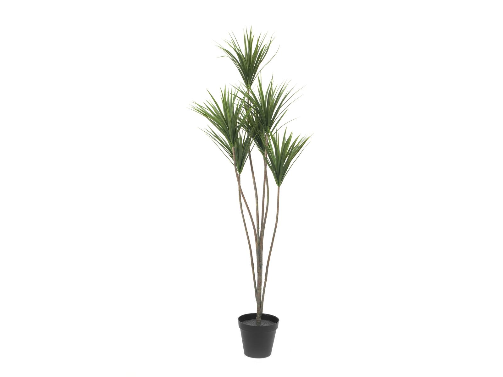 EUROPALMS Yucca palme, piante artificiali, 130cm