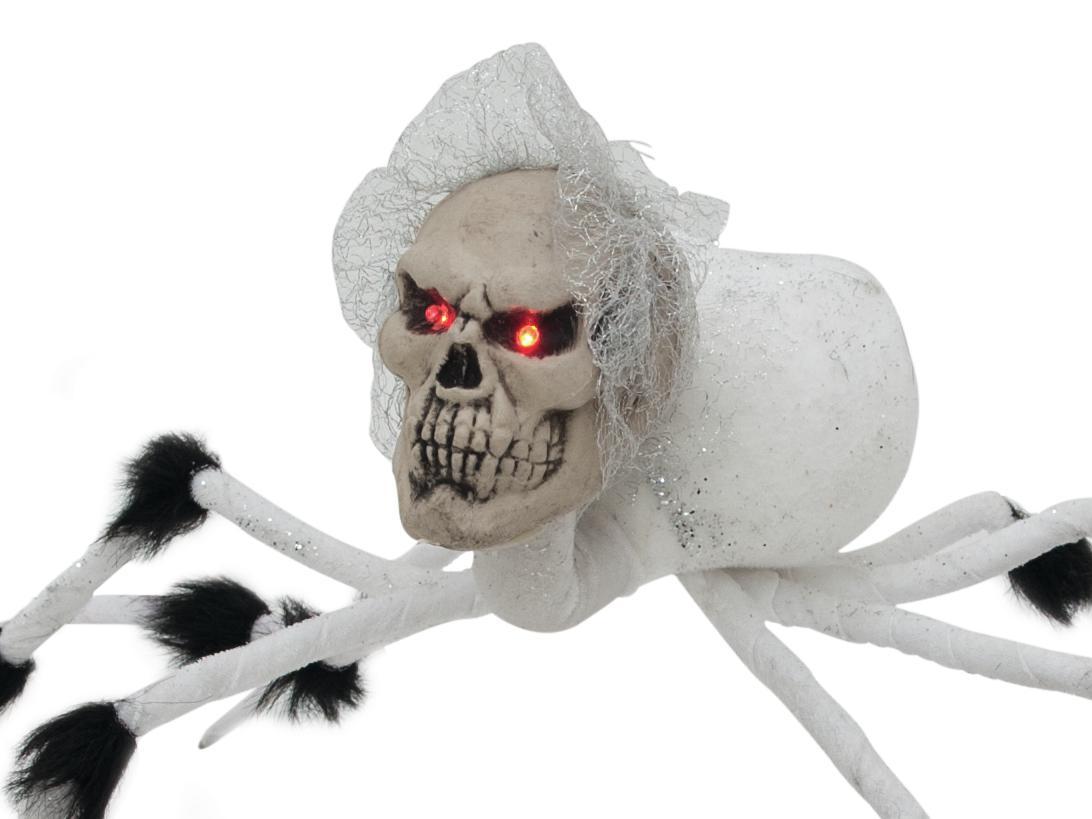 EUROPALMS Halloween spider spo