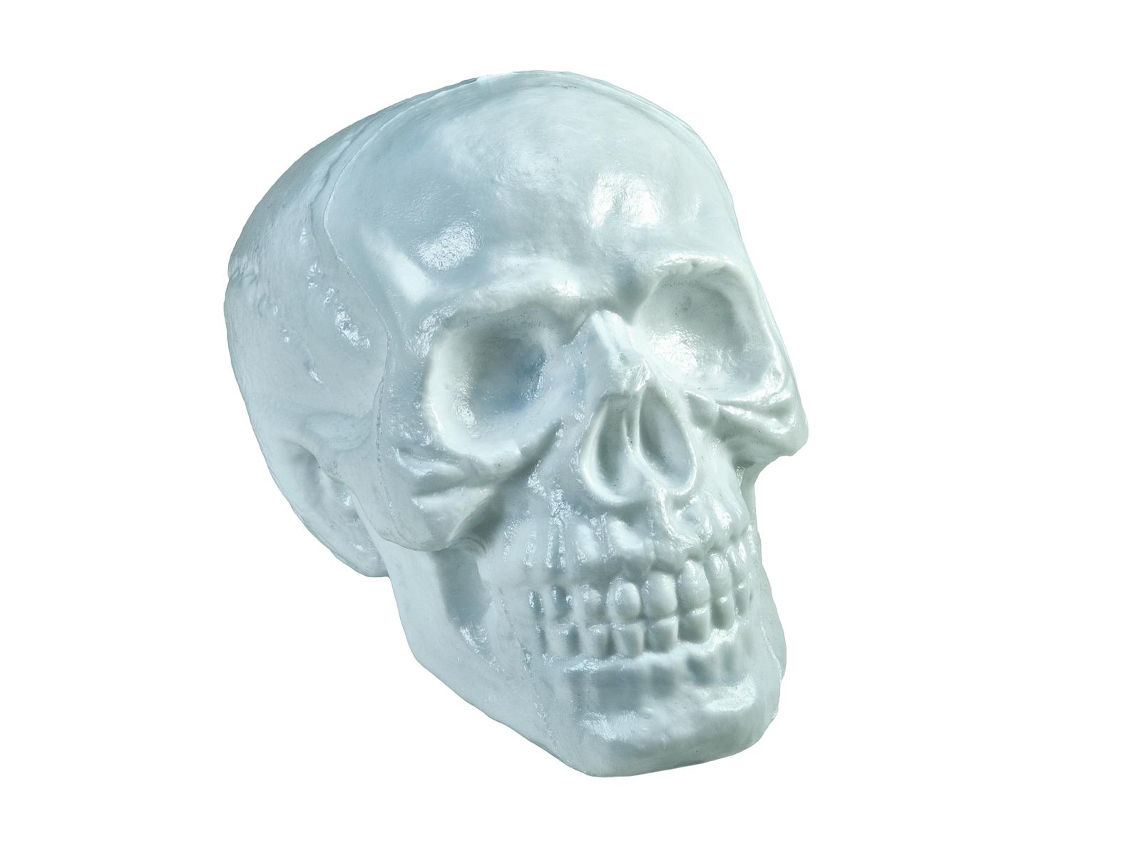 EUROPALMS Halloween Cranio, 31x22x22cm