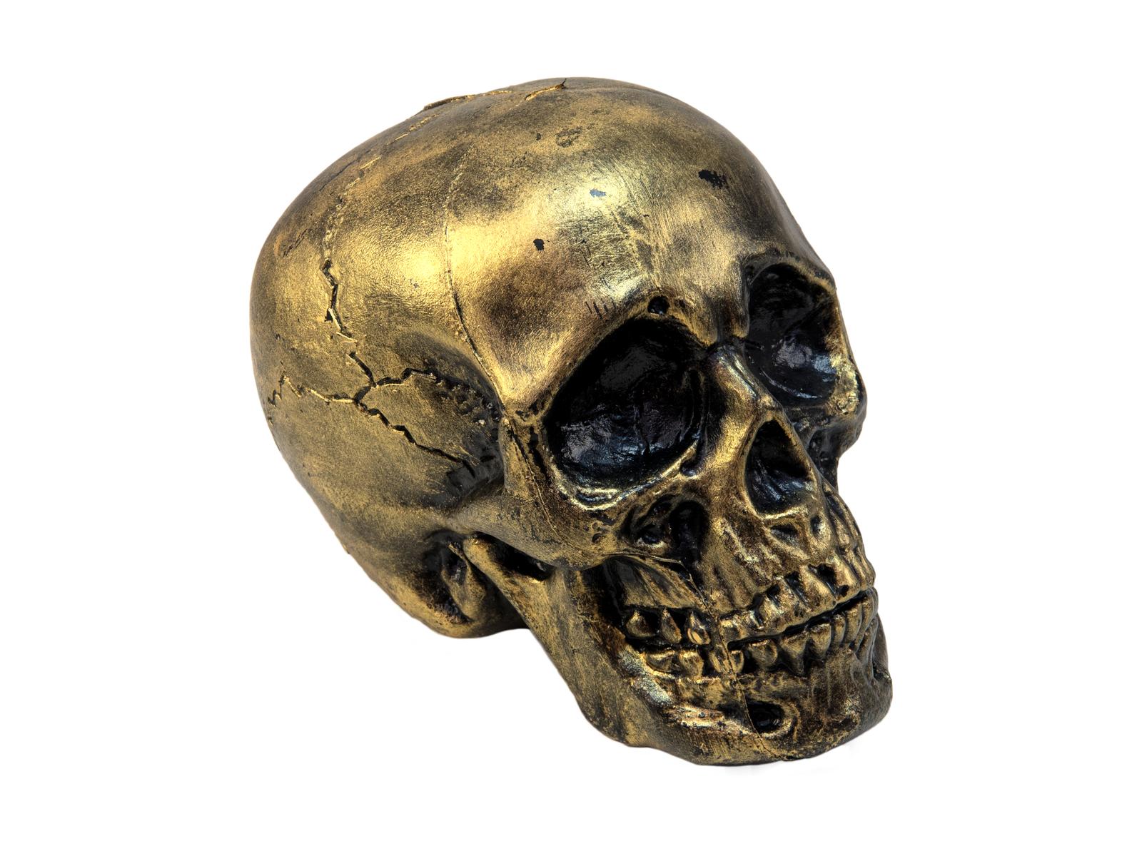 EUROPALMS Halloween Cranio, oro