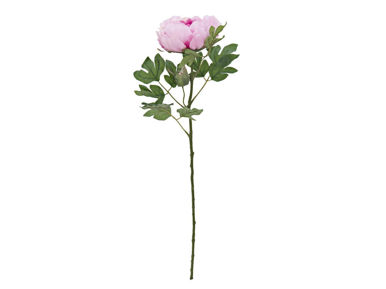 EUROPALMS Peonia Ramo Classico, rosa, 80cm