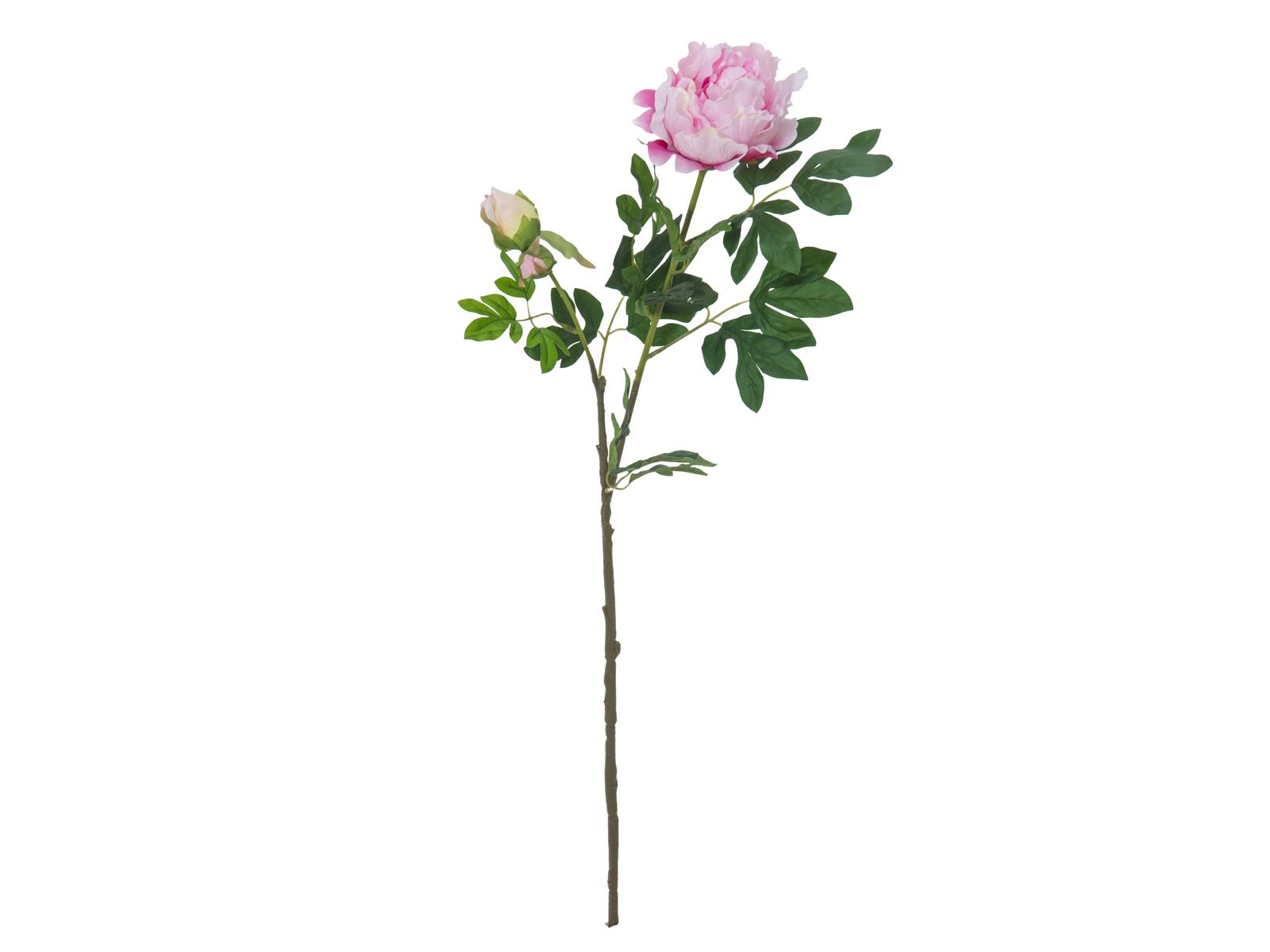 EUROPALMS Peonia Ramo Premium, rosa, 100cm