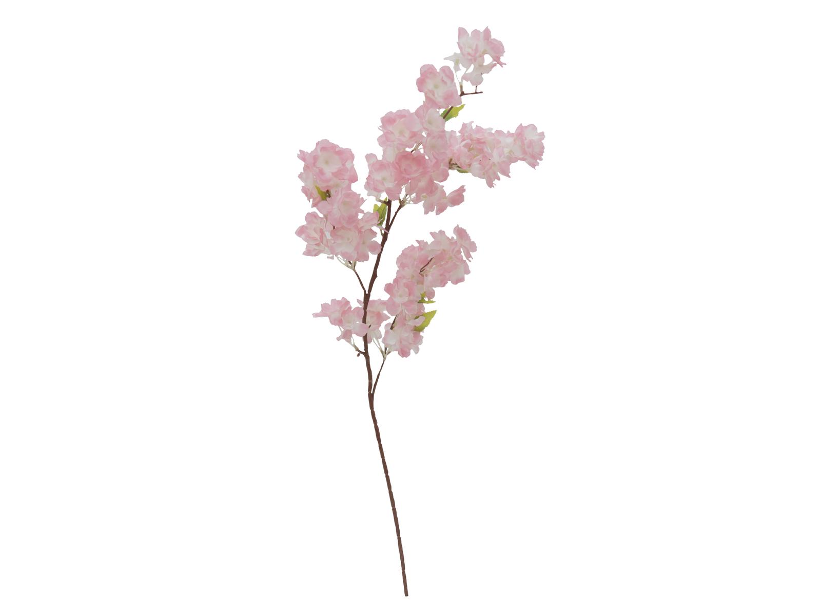 EUROPALMS Ciliegio spray XXL, rosa, 90cm