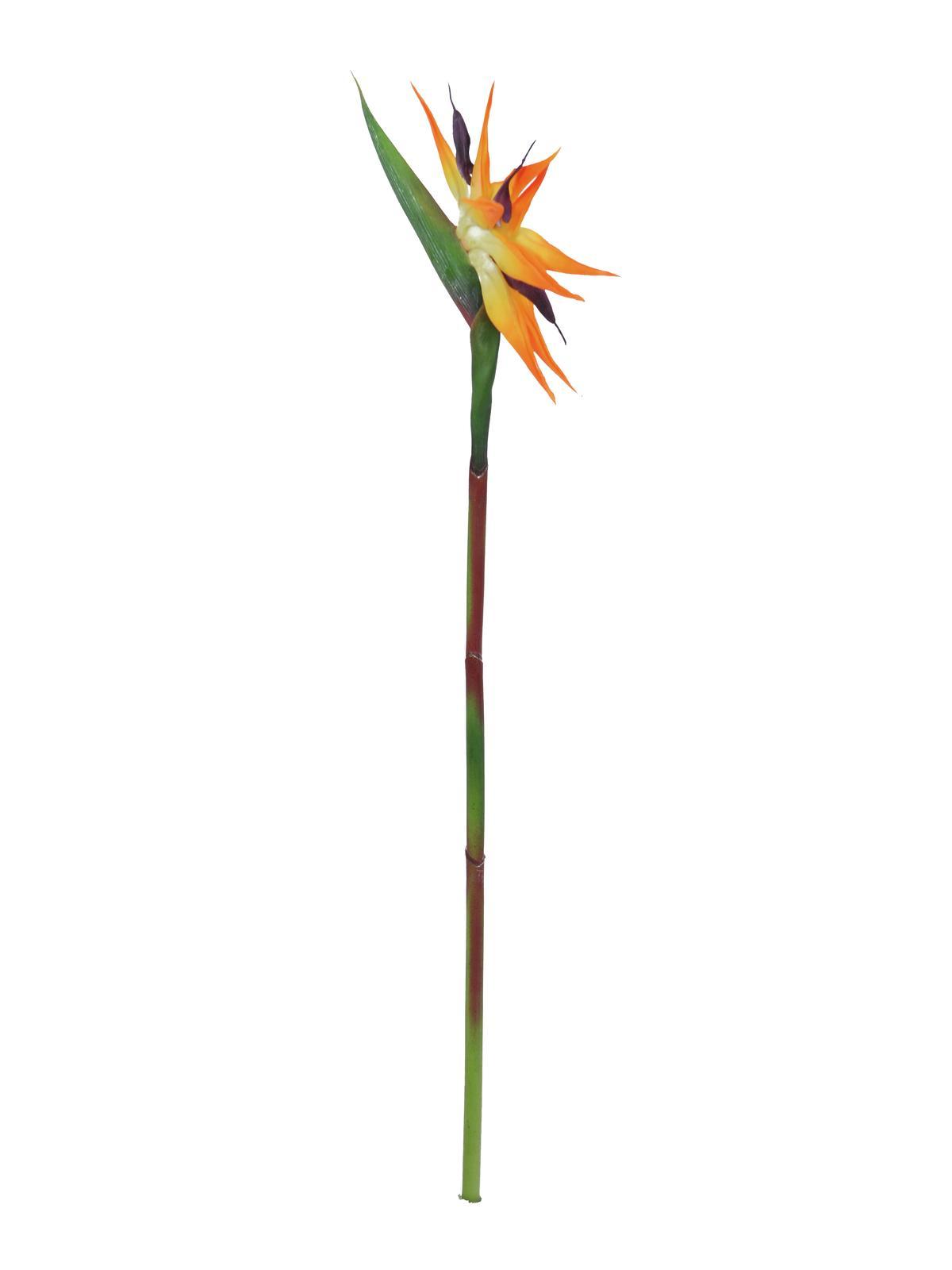 EUROPALMS Paradiesvogel-Blume, Kunstpflanze, orange, 95cm