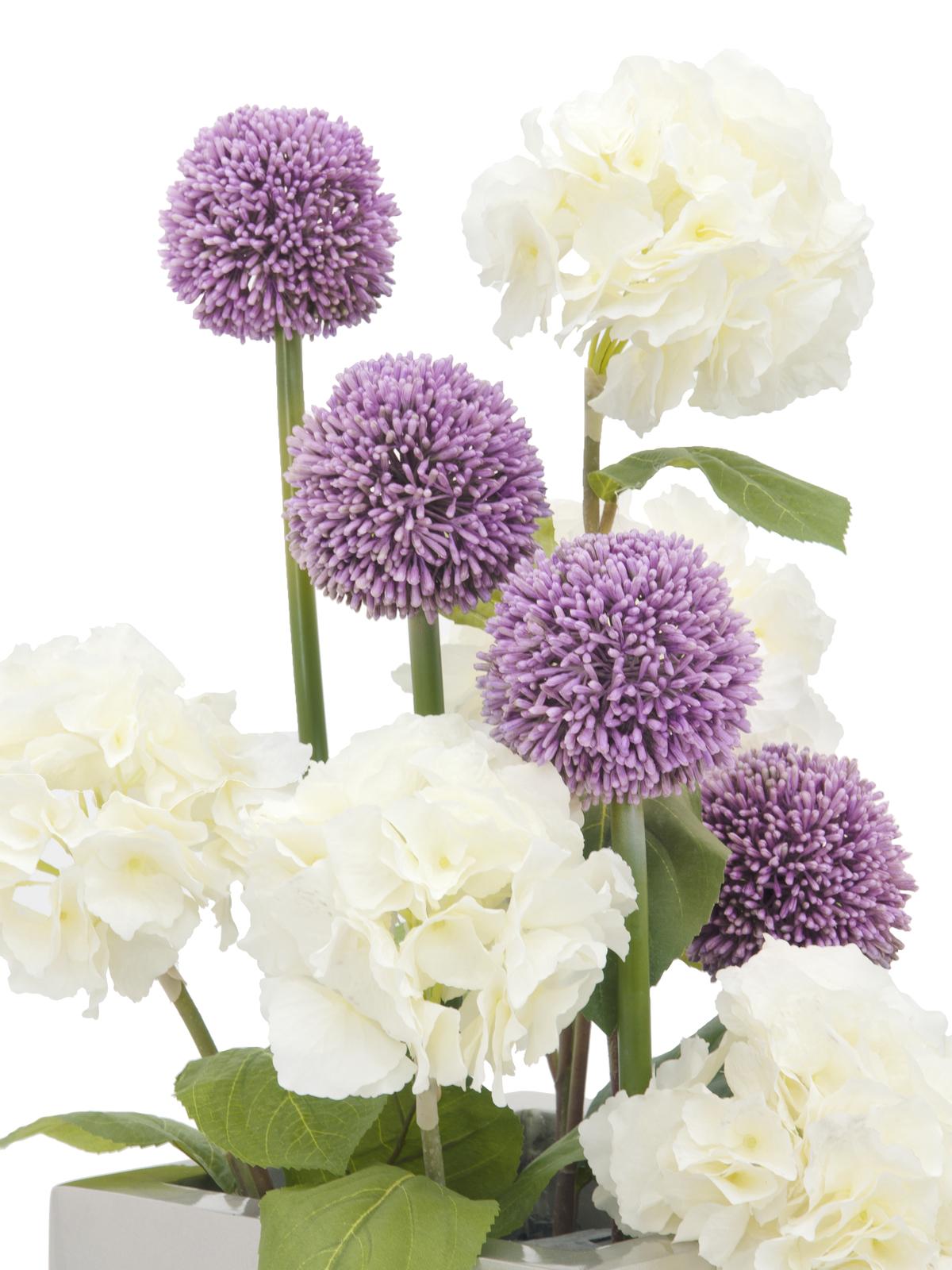 EUROPALMS Alliumzweig, künstlich, lavendel, 55cm