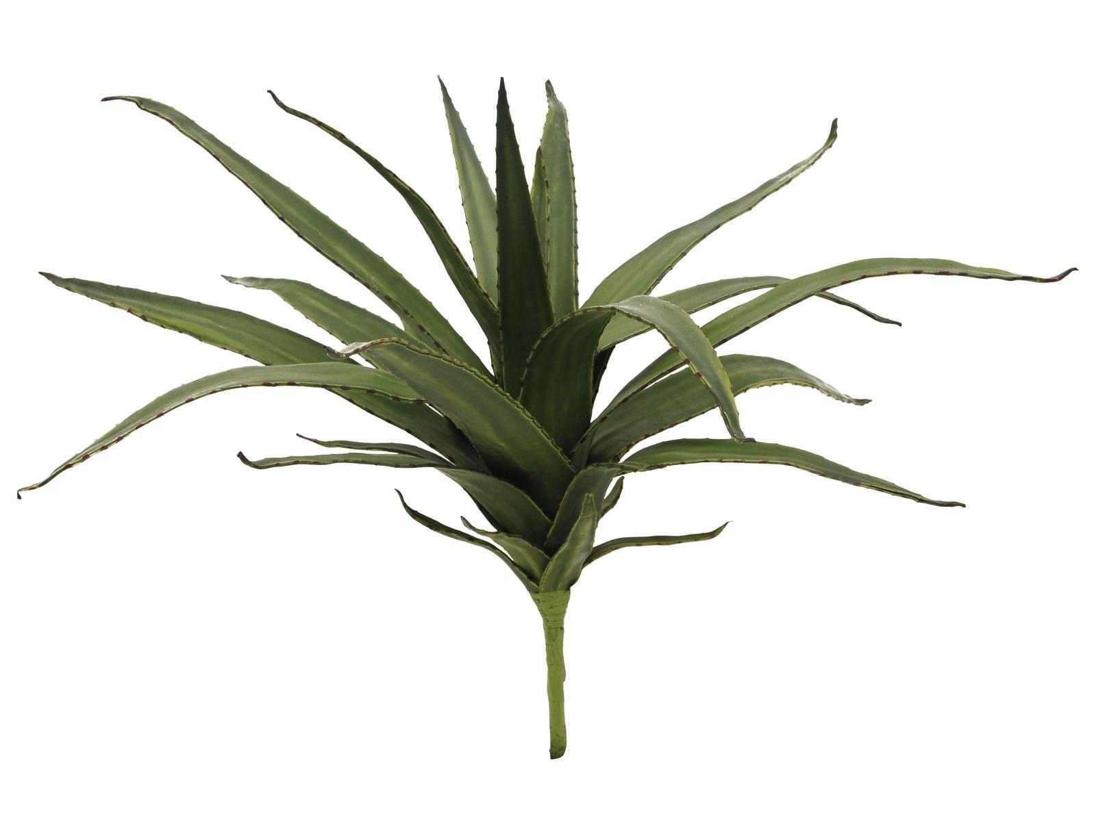 EUROPALMS Aloe (EVA), künstlich, grün, 50cm