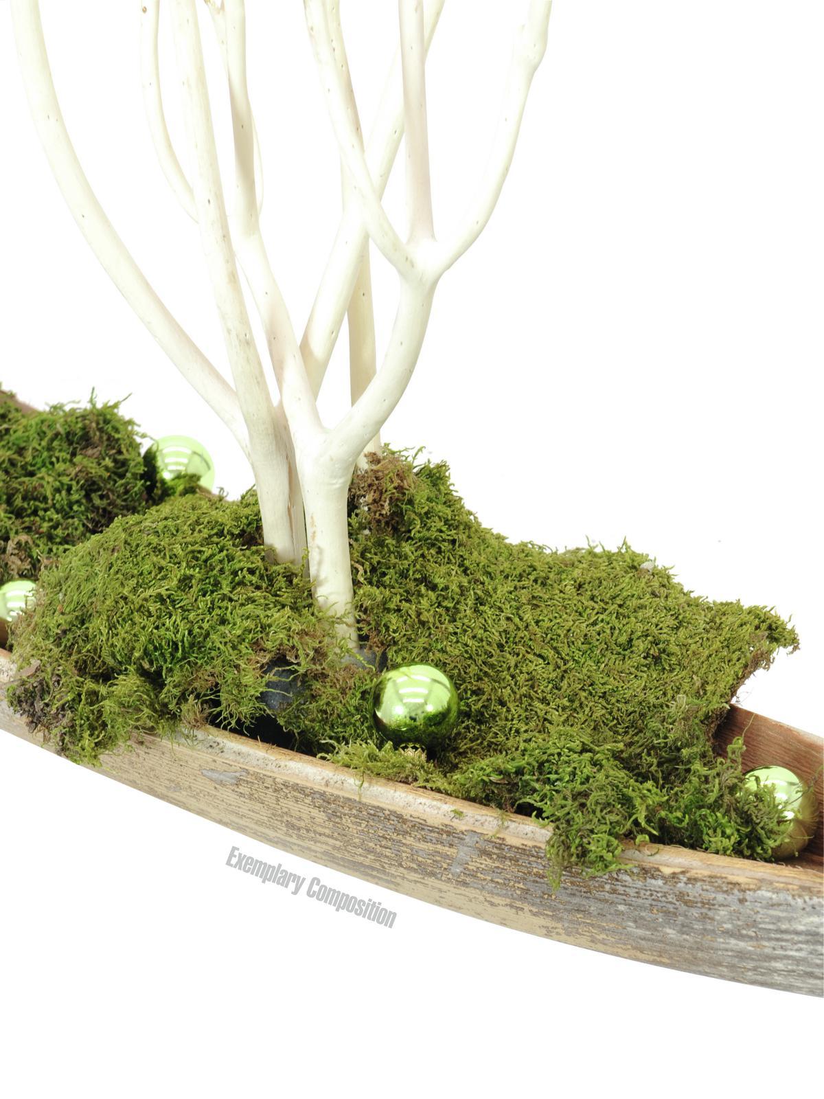EUROPALMS Decoball 3,5 cm, verde chiaro, shiny48x