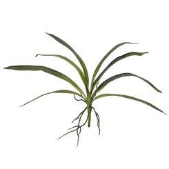60cm EUROPALMS Sanseveria grün EVA