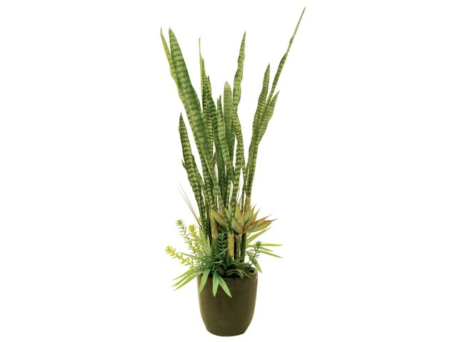 mpn82600035-europalms-sukkulenten-mix-kunstpflanze-190cm-MainBild