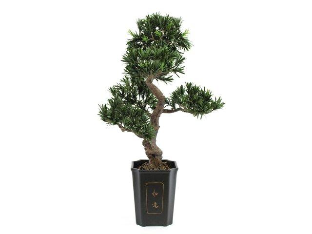 mpn82600116-europalms-bonsai-podocarpus-artificial-plant-80cm-MainBild