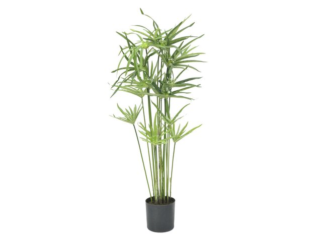 mpn82600138-europalms-cyprus-grass-artificial-76cm-MainBild