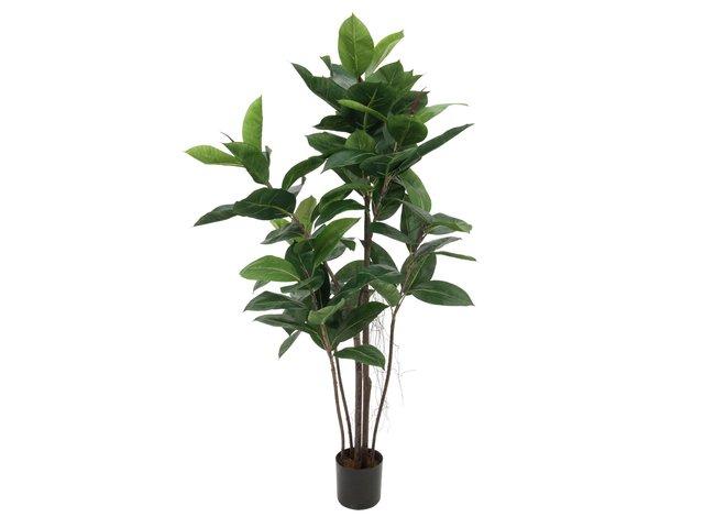 mpn82600150-europalms-gummibaum-kunstpflanze-120cm-MainBild
