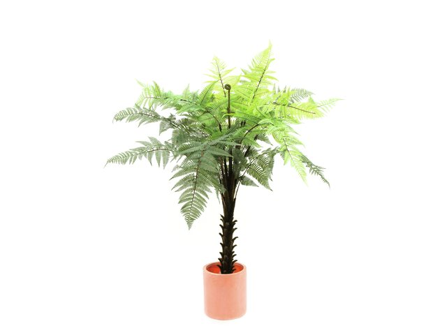 mpn82600152-europalms-woodwardia-tree-artificial-180cm-MainBild