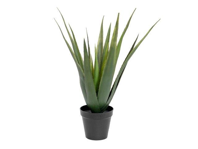 mpn82600167-europalms-aloe-vera-pflanze-kunstpflanze-60cm-MainBild