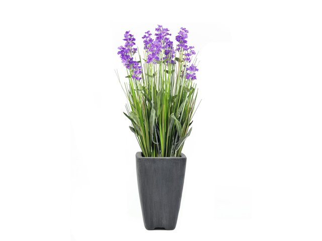 mpn82600211-europalms-lavender-artificial-plant-purple-in-pot-45cm-MainBild