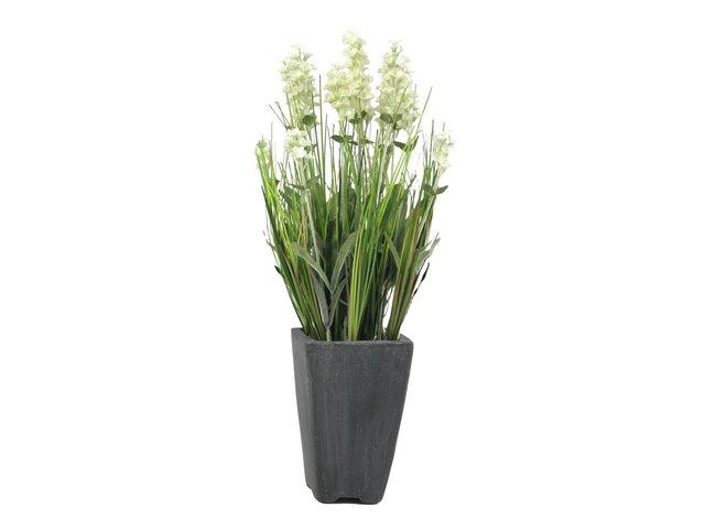 mpn82600212-europalms-lavender-artificial-plant-cream-in-pot-45cm-MainBild