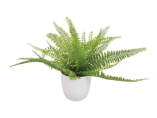 mpn82600218-europalms-farnbusch-im-dekotopf-kunstpflanze-26-blaetter-27cm-MainBild