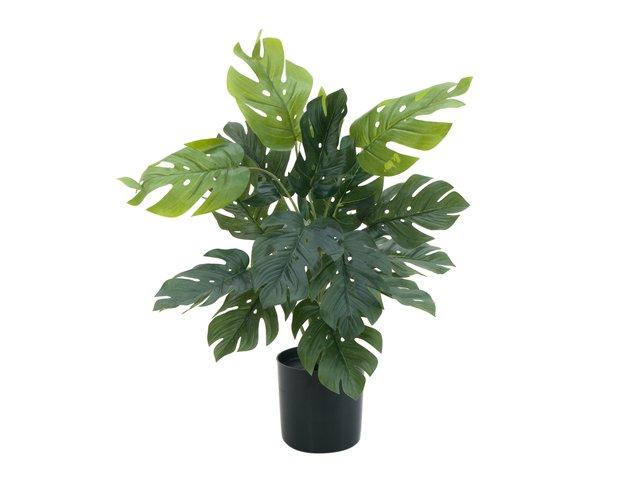 mpn82600233-europalms-splitphilodendron-kunstpflanze-38cm-MainBild