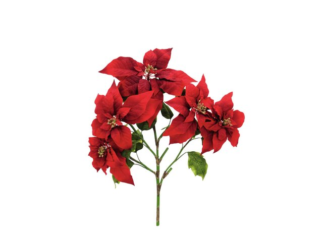 mpn83500432-europalms-poinsettia-bush-red-60cm-MainBild