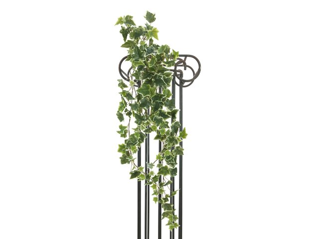 mpn82501895-europalms-holland-ivy-tendril-embossed-artificial-183cm-MainBild