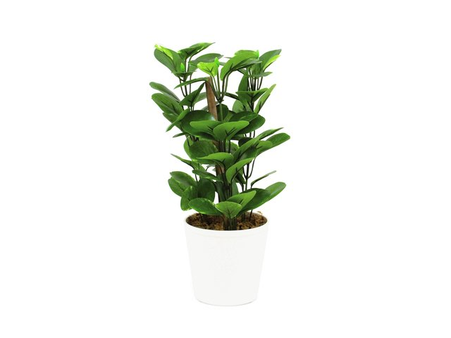 mpn82502106-europalms-green-leaf-plant-artificial-30cm-MainBild