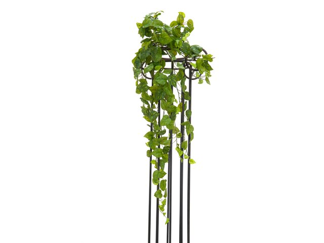 mpn82502502-europalms-pothos-bush-tendril-premium-artificial-100cm-MainBild