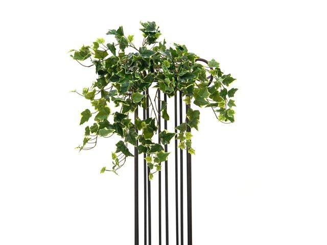 mpn82502510-europalms-holland-ivy-bush-tendril-premium-artificial-50cm-MainBild