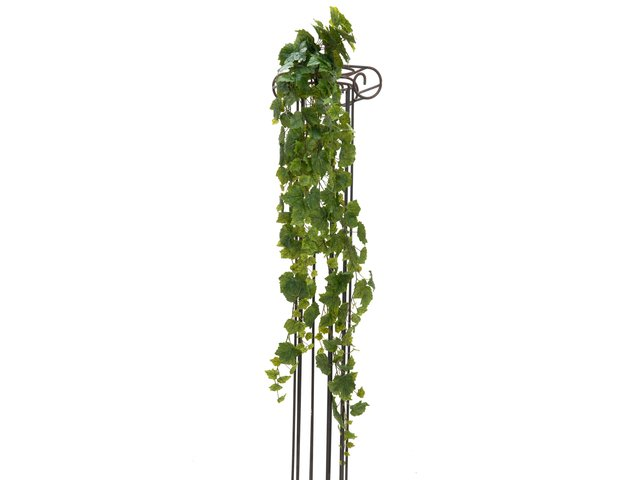 mpn82502515-europalms-weinbuschranke-premium-kuenstlich-170cm-MainBild