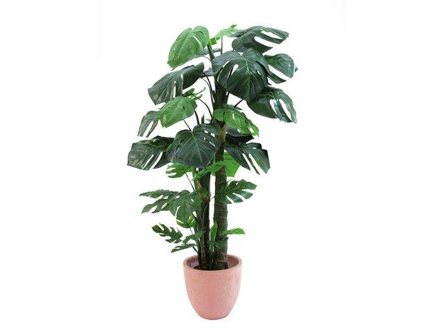 mpn82505415-europalms-splitphilodendron-kunstpflanze-160cm-MainBild
