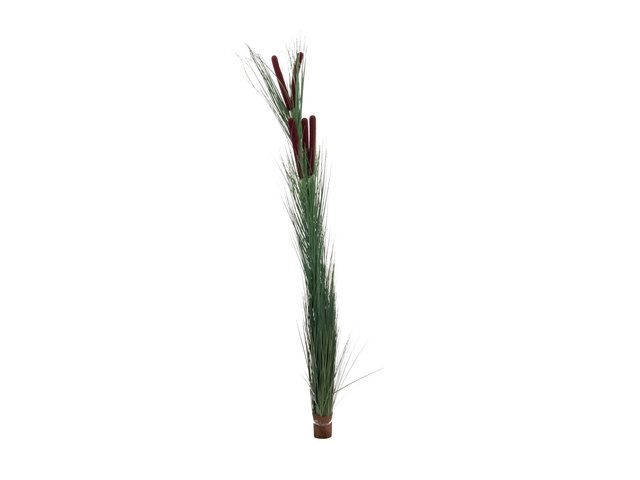 mpn82505854-europalms-reed-grass-with-cattailsdark-green-artificial-152cm-MainBild